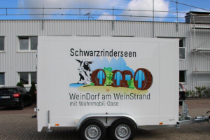 Refrigerated vans for sale